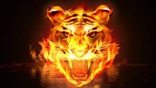 Angry Flame Tiger Keyboard Theme