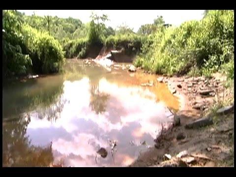 Acid Mine Drainage in Wayne National Forest Southeast Ohio