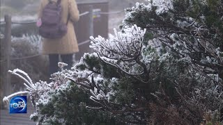WINTER GREETS US EARLY (News Today) l KBS WORLD TV 211018