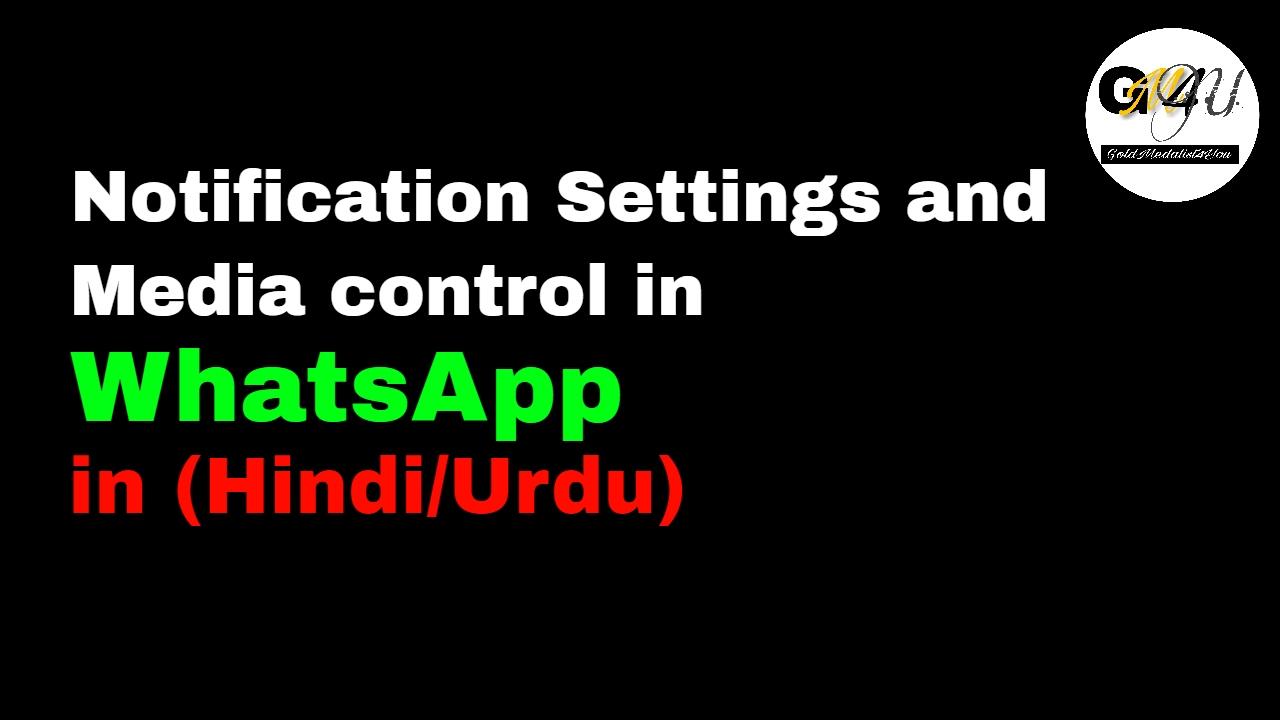 Whatsapp notification settings pop ups control data usage media whatsapp notification settings pop ups control data usage media options friend invitation help stopboris Gallery