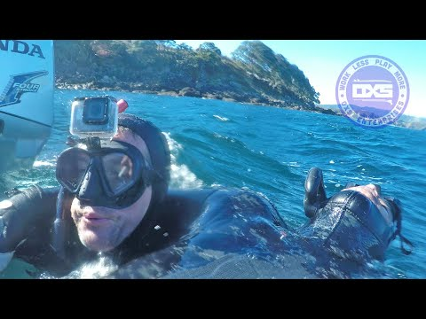 Spearfishing Rescue In New Zealand - What Went Wrong & Right