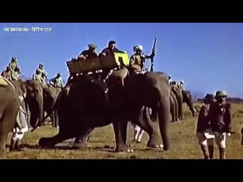 Rare Footage Of Tiger Hunting India 1903 British Rule In Color
