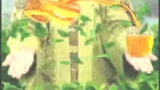 Iklan Frestea Green Tea Rasa Madu