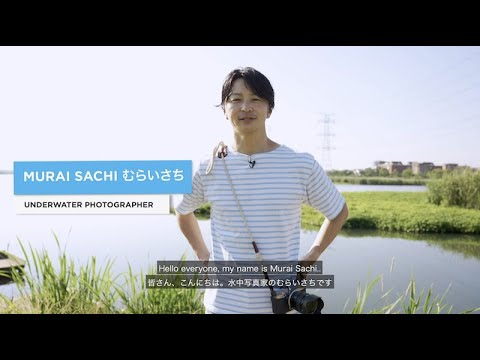 """""""Why did you learn to dive and where did your adventure take you?"""" Series EP - 34 - Murai Sachi"""