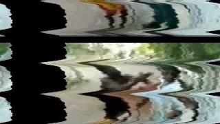 Tet Murda Woi Audio Mp3 Down Load - Maxchiney