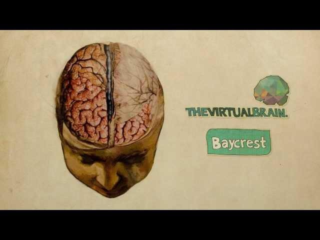 Inside The Virtual Brain