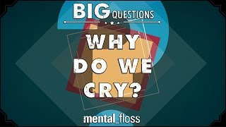 Why do we cry?  - Big Questions - (Ep. 202)
