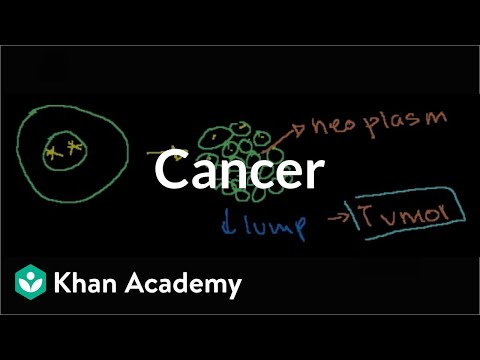 """Thumbnail for the embedded element """"Cancer   Cells   MCAT   Khan Academy"""""""