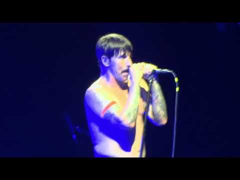 Red Hot Chili Peppers - I Could Have Lied (Dublin, #1, 2017)