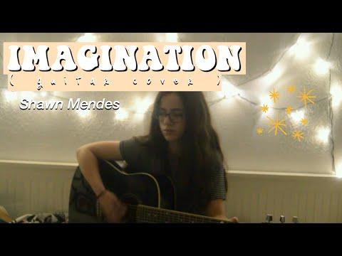 IMAGINATION /Shawn Mendes - acustic guitar cover w/ lyrics (Karaoke)