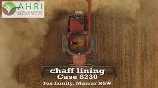 Video The Fox family chaff lining! download MP3, 3GP, MP4, WEBM, AVI, FLV November 2017
