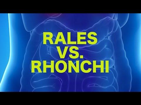 Rales vs. Rhonchi || USMLE