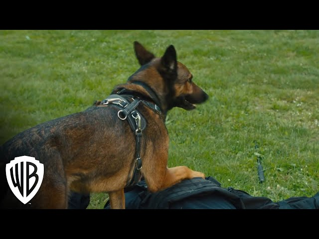 Max 2: White House Hero | Digital Trailer | Warner Bros. Entertainment