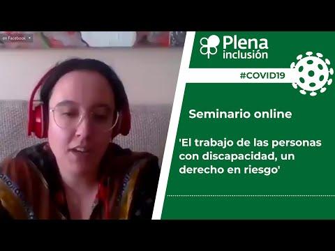 #covid19.-seminario-online-'el-trabajo-de-las-personas-con-discapacidad,-un-derecho-en-riesgo'