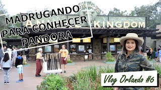 VLOG ORLANDO #6 | ANIMAL KINGDOM + RAINFOREST CAFE