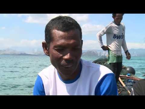 INDONESIAKU - PULAU PAPAGARANG (1/8/2017) 3-1