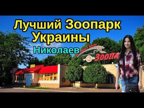 Николаевский Зоопарк 2019. Лучший зоопарк Украины.  Zoo of Ukraine.Zoo of Nikolaev