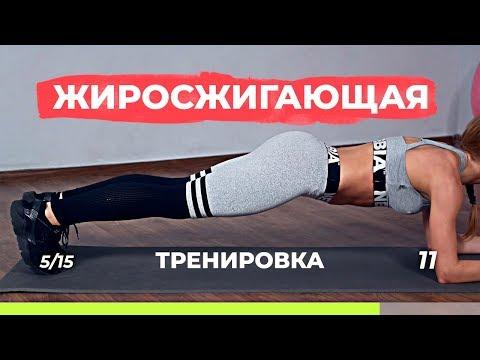 Жиросжигающая тренировка для