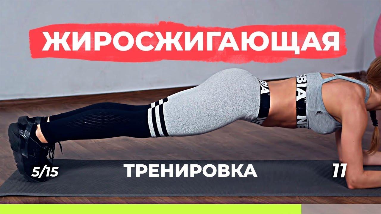Жиросжигающая тренировка для похудения дома | комплекс упражнений для похудения дома