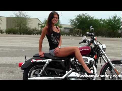 Used 2005 Harley-Davidson XL1200C Sportster 1200 Custom for Sale
