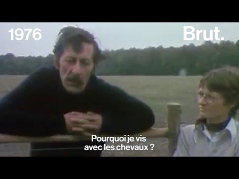 Jean-Rochefort, une vie avec les chevaux