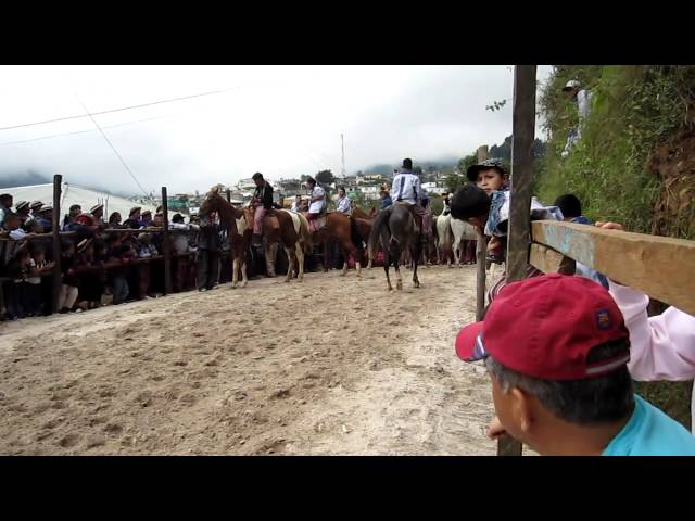 Todos Santos Horse Races Travel Video