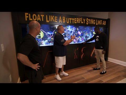 Antonio Brown's Custom Aquarium Is A Touchdown   Tanked