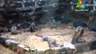 Ya Zainab s.a Ya Zahra s.a - Shuja Rizvi Nohay 2012