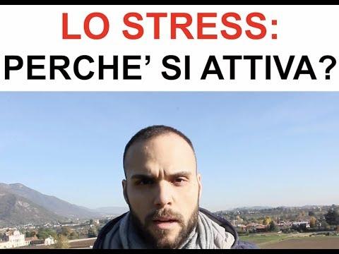 Lo stress: perché si attiva?