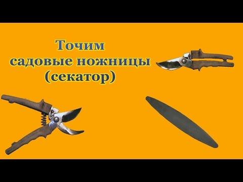 How to sharpen garden pruner shears at home