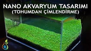 Nano Akvaryum Kurulumu | Ofis Masasına Yeşil Bahçe Yapıyoruz! | Tohumdan Çimlendirme
