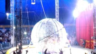 Baixar Circo Porto Rico - O Fantástico globo da morte em Horizonte