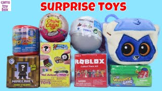 Paw Patrol 5 Mashems Mario Kart Surprise Toys Kids Roblox Minecraft Trolls Chupa Chups Animal Jam