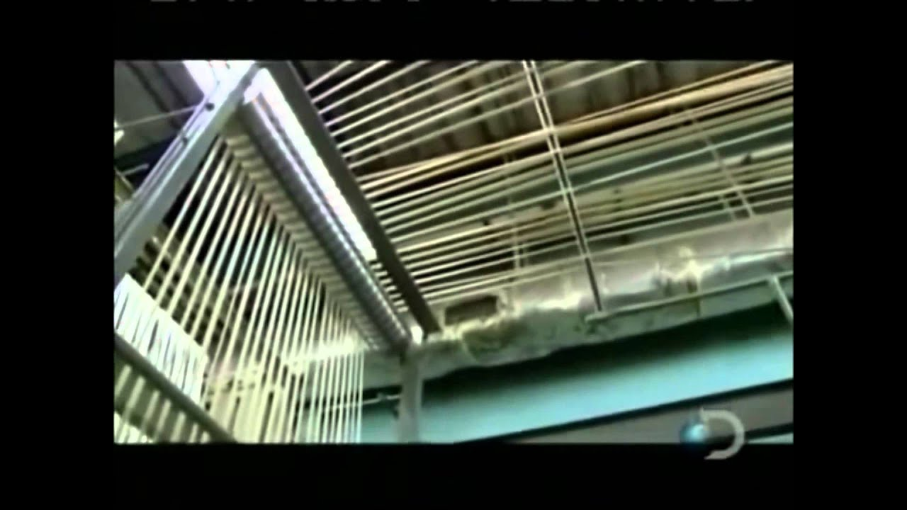 Producción de fibra de algodón (Telas e Hilos) - YouTube