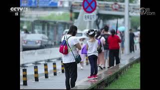 《生活提示》 20190810 暑期孩子出行安全要确保| CCTV