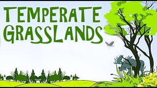 Lands | A Visit To The Grasslands With The Kids |  Temperate Grasslands | Part - 2 Animated