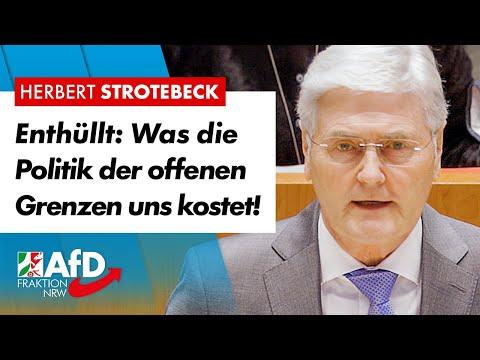 Enthüllt: Was die Politik der offenen Grenzen uns kostet! – Herbert Strotebeck (AfD)