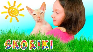 Cat video collection for kids | SKORIKI