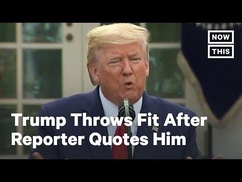 Trump Attacks Reporter