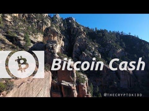 Bitcoin Cash | Roger Ver On The Future Of Bitcoin