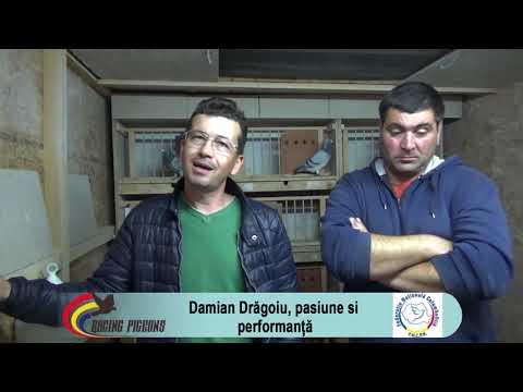 Damian Drăgoiu, Pasiune şi Performanţă