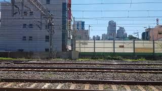7531호 디젤기관차 부산진발 동해행 3696 컨테이너…
