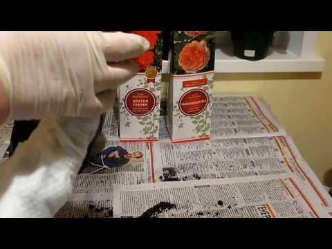Заказ саженцев роз из ИМ Деленка 19,04,17