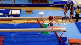 Анастасия(  спортивная гимнастика 1 разряд)