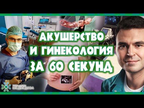 Операция TVT-o
