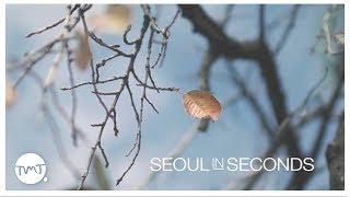 Seoul in Seconds