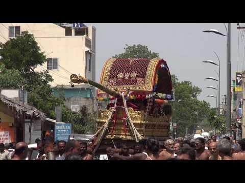 Kanchi Varadarajan - Thoopul Sri Desikan Mangalasasanam   01_Purappadu to Varadarajan Temple_22m 12s