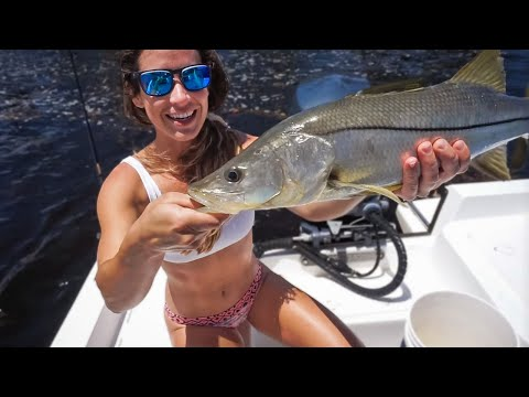 Operation MONSTER Snook | TIRL Ep. 01