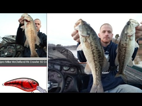 Red Crankbaits For Pre Spawn Bass (Lake Norman)