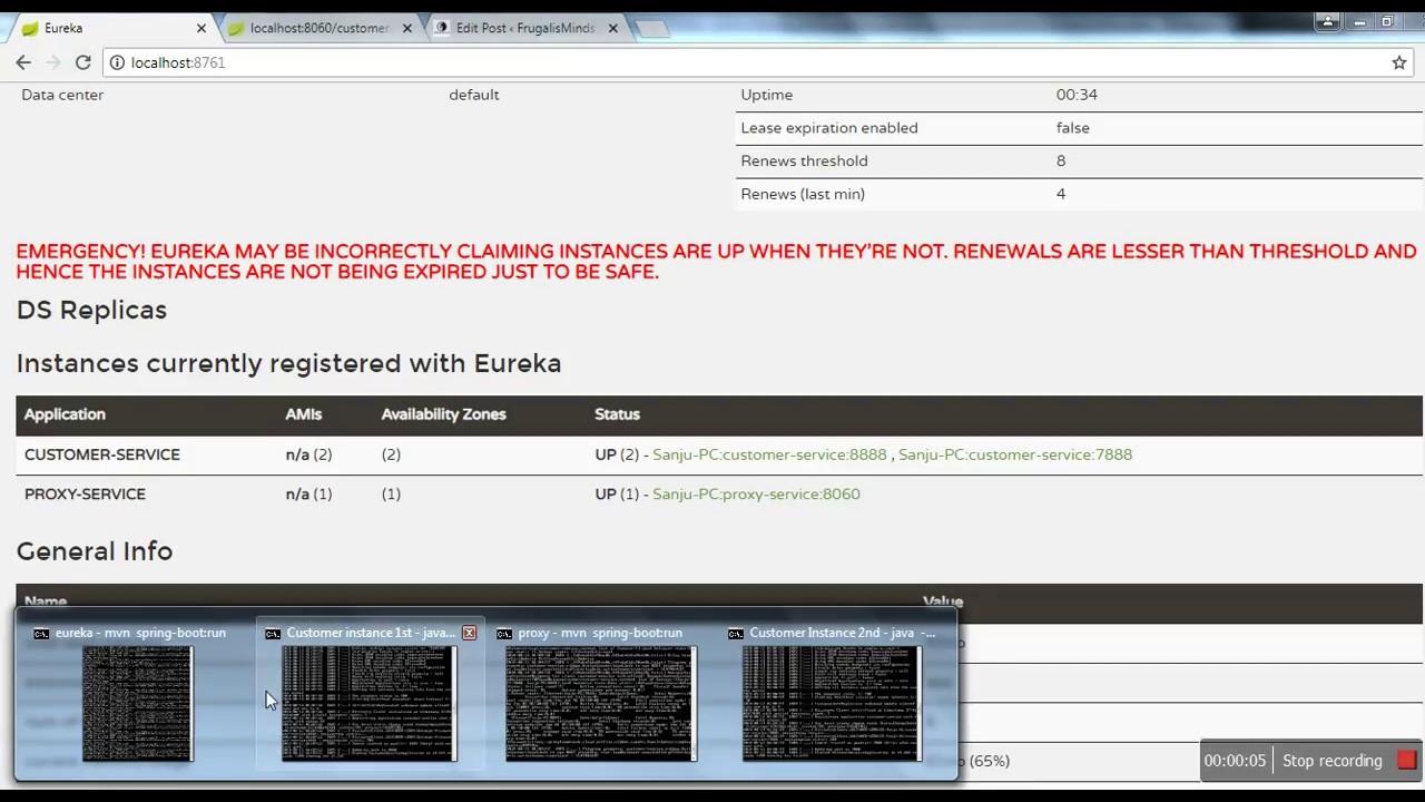 Server Side Load Balancing With Netflix Zuul and Eureka - FrugalisMinds